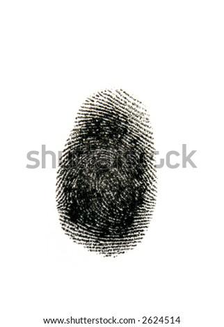 Single black fingerprint on white - stock photo