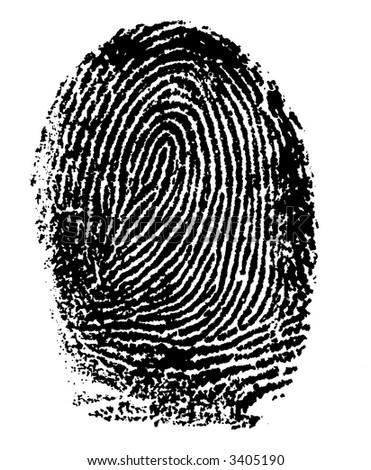Single black fingerprint - simple monochrome image - stock photo