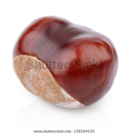 Single chestnut isolated on white with clipping path - stock photo