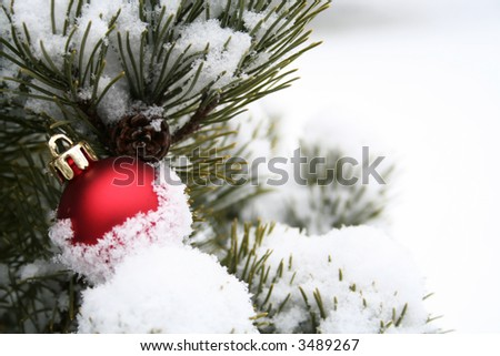 Single Christmas ornament in a snowy Christmas tree - stock photo