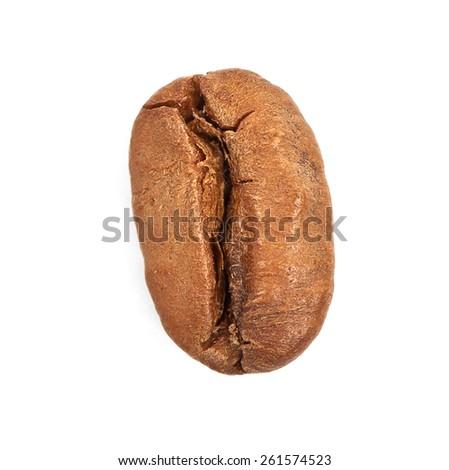 Single coffee bean isolated on white background - stock photo