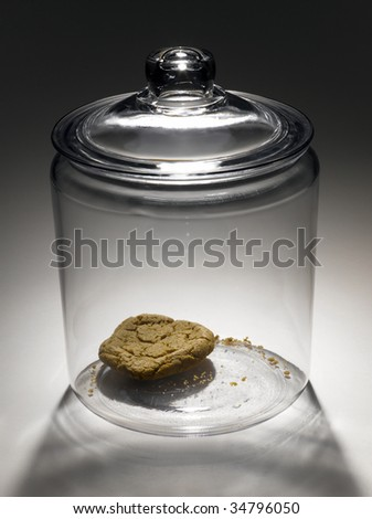 Single cookie in cookie jar - stock photo