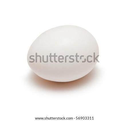 single egg isolated on white - stock photo