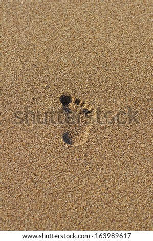 Single footprint in the sand of evening beach - stock photo