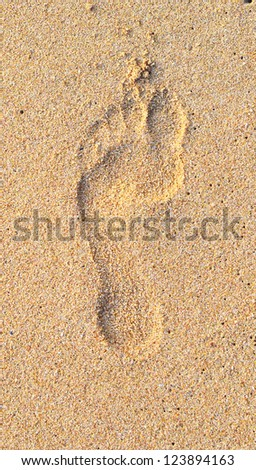 single footprint on wet beach sand - stock photo