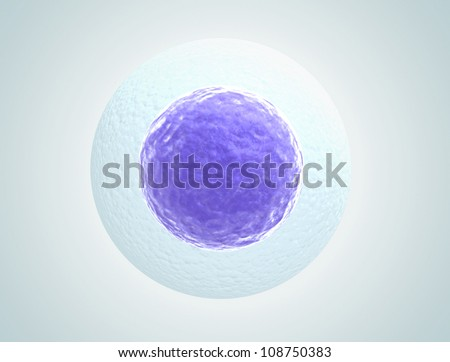 Single human egg cell high quality 3d render - stock photo