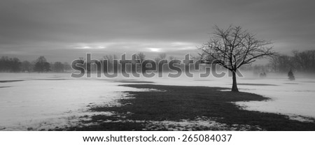 Single lonely tree silhouette in a winter setting. Ground is partially covered with snow. Tree is bare with no leaves and many branches. Image is of loneliness, independence, somber, captivating. - stock photo