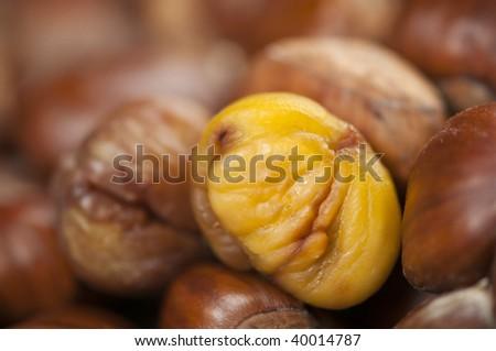 single peeled roasted chestnut kernel with others waiting - stock photo