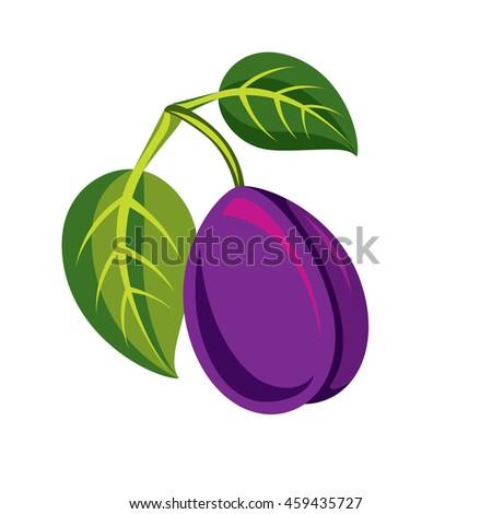 Single purple simple plum with green leaves, ripe sweet fruit illustration. Healthy and organic food, harvest season symbol.  - stock photo