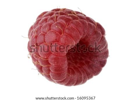 Single raspberry fruit isolated against white background - stock photo