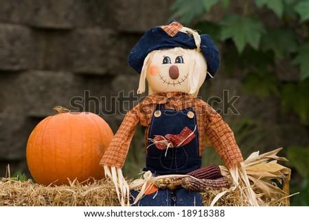 Single scarecrow - stock photo