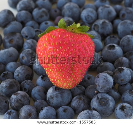 Single strawberry on a bed of blue berries - stock photo
