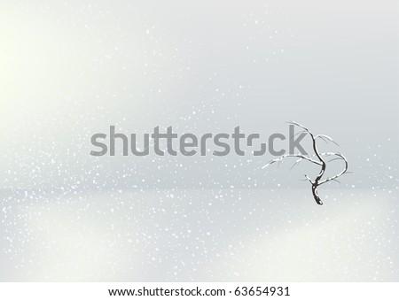 Single tree in the winter field - stock photo