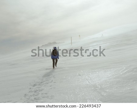 Single Woman Climbing Against The Freezing Wind  - stock photo