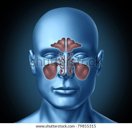 Sinus human nasal cavity with human head representing health care and medical treatment for colds and congestion - stock photo