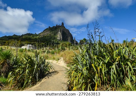 Sisal Plantation with Mount Manaia in the background - stock photo