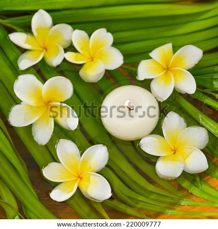 Six White frangipani with candle and wet palm leaf  - stock photo