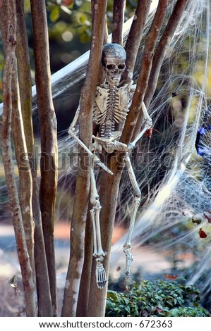 Skeleton clinging to a tree - stock photo