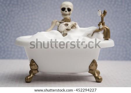 Skeleton dog getting bubble bath - stock photo
