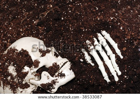 skeleton in dirt - stock photo
