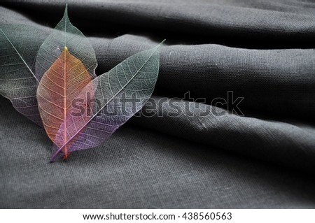 Skeleton leaves in heart shape on gray fabric background - stock photo