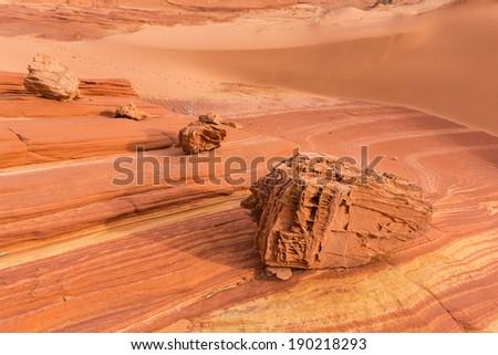 Skeleton stones on The Wave , Arizona  - stock photo