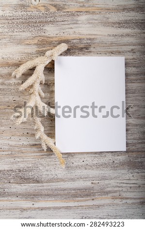 Sketch book and coral on wooden background - stock photo