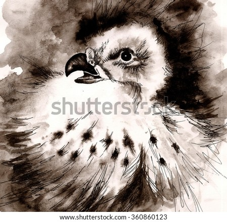 Sketch of eagle child in nest drawn by watercolor - stock photo
