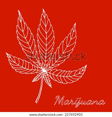 Sketch of marijuana isolated on red background.  - stock photo