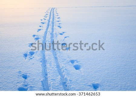 Ski tracks snow lake - stock photo