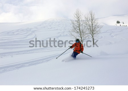 Skier in fresh powder on a beautiful winter day, Utah, USA. - stock photo