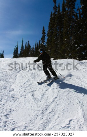 Skiing the winter white slopes in Whistler, Canada - stock photo