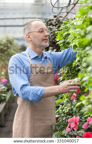 Skillful senior gardener is working at garden center. He is standing and touching plant. The man is smiling and looking at flower with interest - stock photo