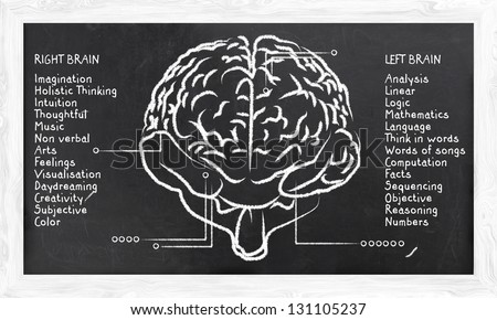 Skills for Right and Left Hemisphere on Blackboard - stock photo