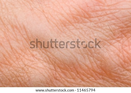 skin macro on 40 years old male arm - stock photo