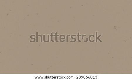 skin texture  - stock photo