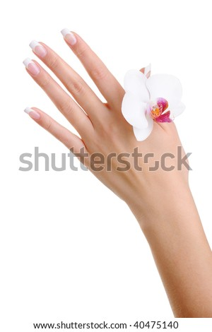 Skincare and purity of a female hand with flower - isolated on white - stock photo