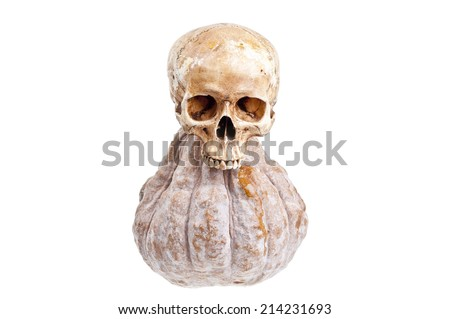 Skull and Pumpkin  Halloween - stock photo