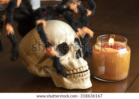 Skull and spider next to a lit candle as a Halloween decoration - stock photo