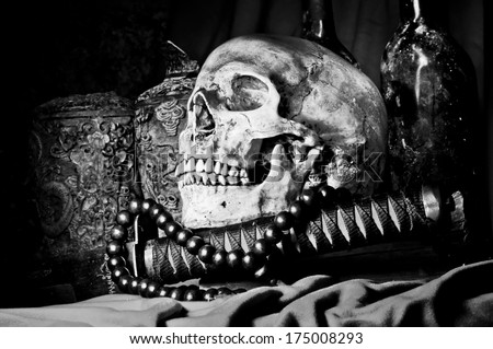 skull  Black and White - stock photo