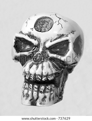 Skull in Black and White - stock photo