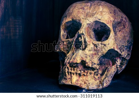 Skull in the shadows, something terrible and death and making pictures vintage dark and look old and Halloween Festival - stock photo