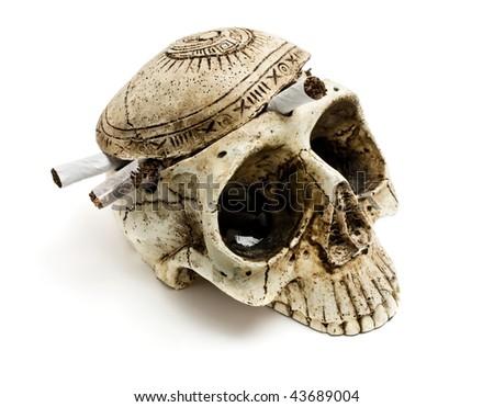 skull on a white background - stock photo