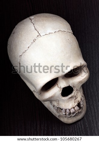 Skull on Dark Wood. Full Depth of Field. - stock photo