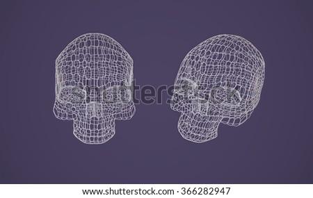Skull. The Three-dimensional Skull on a Dark background. Head. Death's Head. Jolly Roger. Wire Skull. Wire Skeleton. 3d models. Modeling. Rendering in 3D Program - stock photo