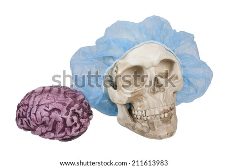 Skull with Hair Net with Brains nearby - path included - stock photo