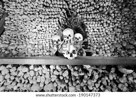 Skulls and bones in Sedlec Ossuary - stock photo