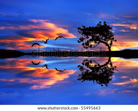 sky and clouds of color in the lake - stock photo