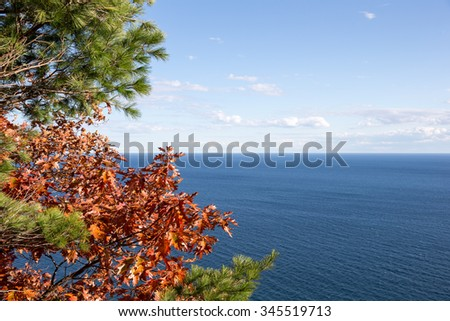 Sky over water horizon framed by red oak leaves and green pine branches on left side of frame.  The blue water is Lake Superior.  Copy space in sky and water if needed. - stock photo