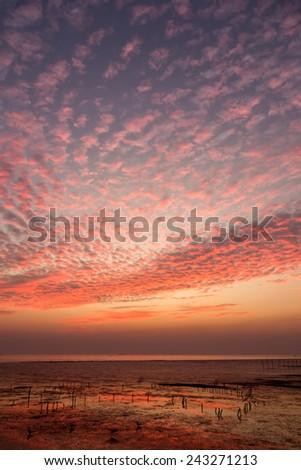 Sky sunset with beautiful orange clouds - stock photo